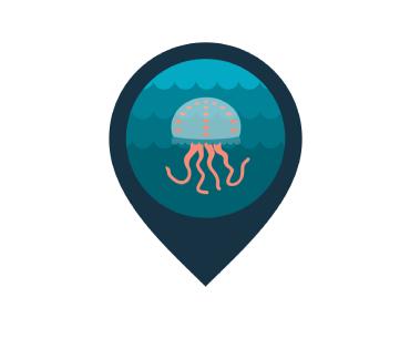infomedusa app